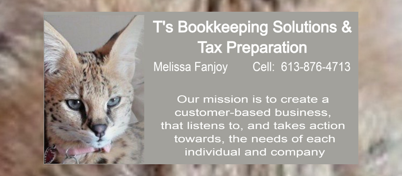 T's Bookkeeping Solutions & Tax Preparation